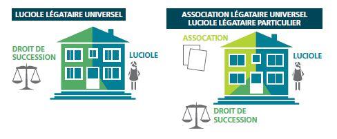 exemple légataire droits de succession guide philanthropie